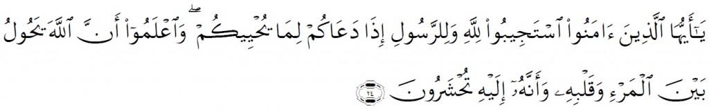 Surah Al-Anfal Chapter 8 Verse 24